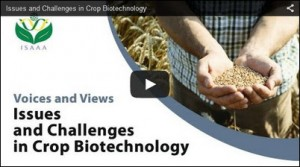 Cover photo for Video: Voices and Views: Issues and Challenges in Crop Biotechnology