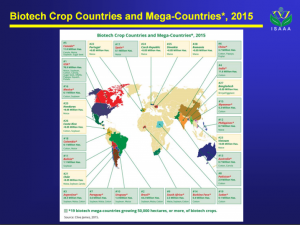 Cover photo for 2015 Global Status of Commercialized Biotech / GM Crops Released