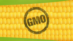 Cover photo for GMO Labels Won't Make Your Food Safer