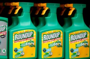 Cover photo for U.N. Experts Find Weed Killer Glyphosate Unlikely to Cause Cancer