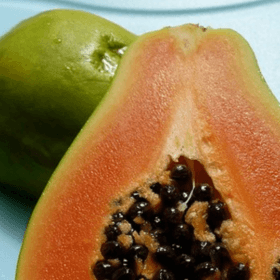 Cover photo for Video GMO Story: The Near Death and Rescue of the Hawaiian Papaya